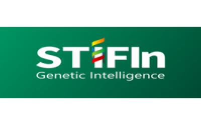 STIFIn Talk : Kenali Bakat Genetiknya, Mengasuh Sesuai Fitrahnya